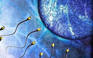 Лечение астенотератозооспермии