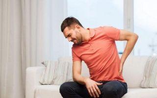Болят почки или спина