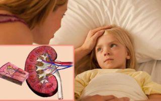 Воспаление почек у ребенка