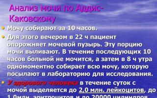 Анализ мочи по Аддис Каковскому