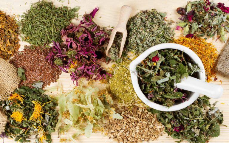 Очищение организма травами рецепты