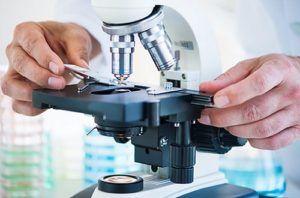 Микроскопическое исследование биоптата