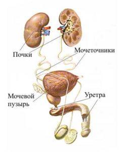 Промывку запрещено делать пациентам, имеющим травмы мочеиспускательного канала