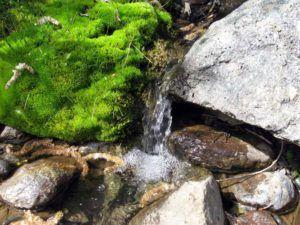 Природные источники минеральной воды
