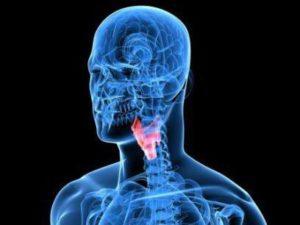 Отклонение в работе щитовидной железы