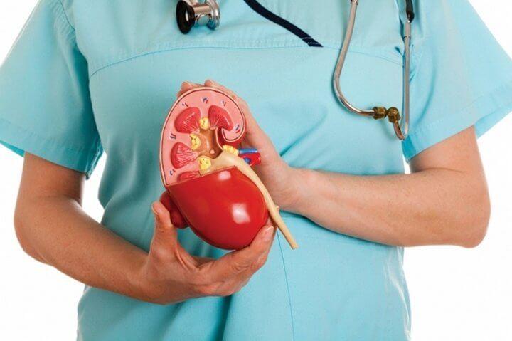 Лечение хронической почечной недостаточности - Лечение болезней внутренних органов. Том 2