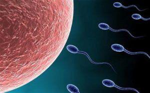 снижение активности сперматозоидов