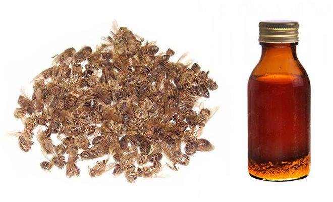 Как сделать настойку пчелиного подмора от простатита