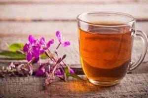 Чай из Кипрея