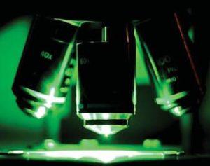 Биоматериал изучают под микроскопом