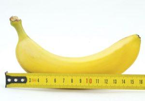 Средний размер полового члена