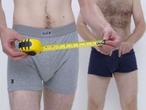 Как измерить длину полового члена