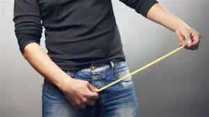 Измерение полового члена