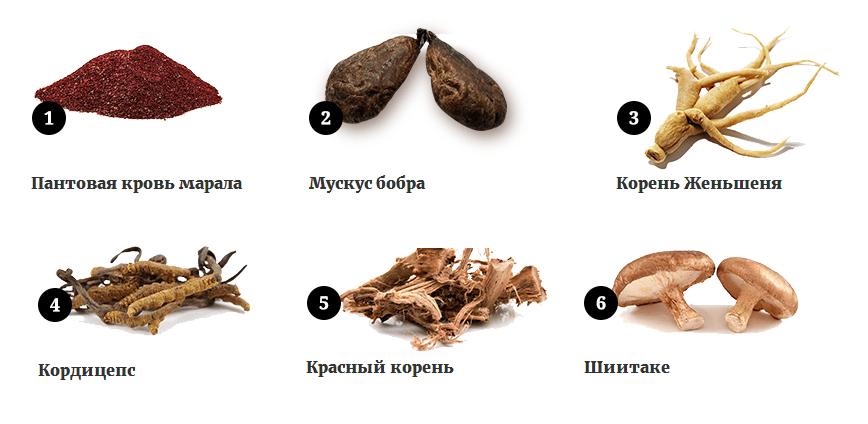 Состав Спартагена