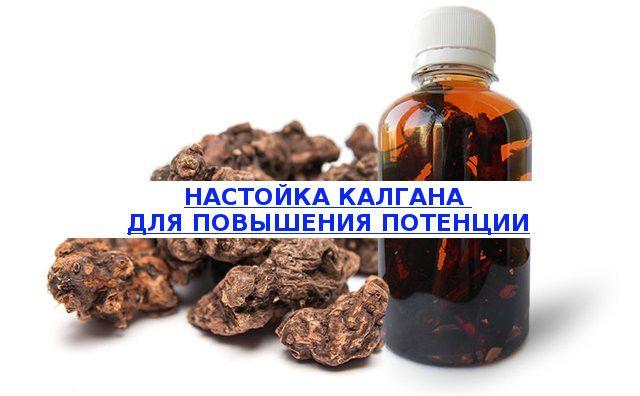Рецепт настойки калгана для повышения потенции у мужчин, как использовать лечебный настой для улучшения эрекции